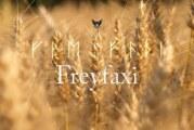 Freyfaxi