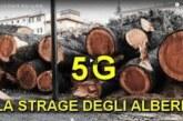 5G la Strage degli alberi